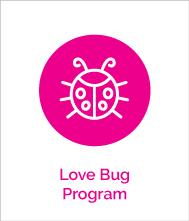 love bug program